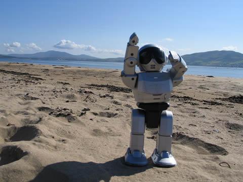 robot playa