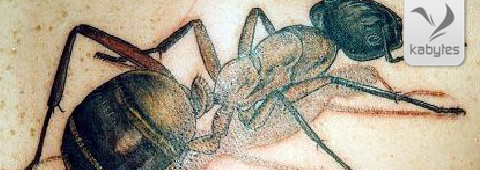 hormiga tatuada