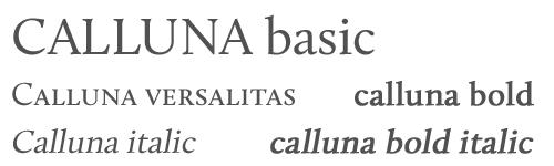 tipografias-con-variantes-12