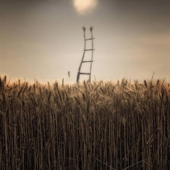 Un campo de trigo visto de frente, con una escalera en el centro cuyos barrotes terminan en manos apuntando al cielo. Luz enrarecida.