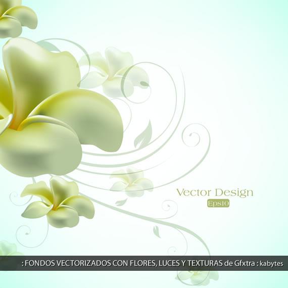 Composicion con flor en color manteca con luces y sombras y ornamentos ...