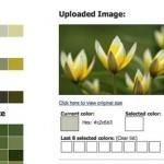 Vista previa del resultado de las paletas de colores elaboradas con CSS Drive