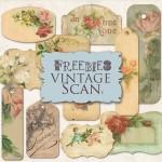 Vista previa de etiquetas estilo vintage con decoraciones de rosas