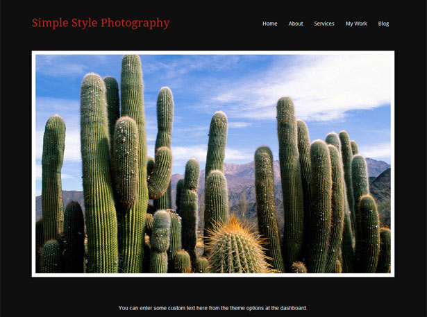 Theme para fotografía en Wordpress