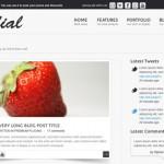 Radial: Theme para blog en PSD