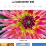 Theme para portfolio en Wordpress