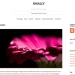 Theme de diseño adaptable para Wordpress
