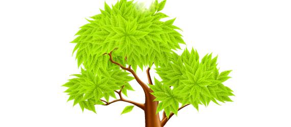 Gran Árbol de Hojas Verdes