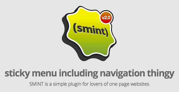 smint one page recurso