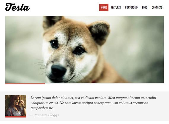 Tesla: Theme para WordPress con PSD