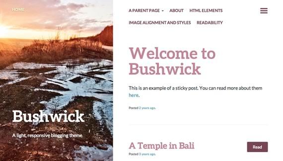 Bushwick: WordPress Template