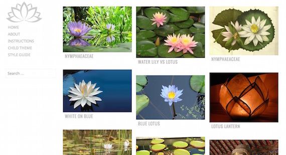 Water Lily: plantilla liviana para WordPress
